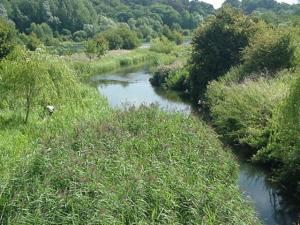 River_Lea_Amwell
