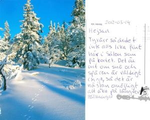 Snö-Sälentot