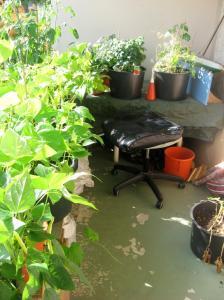 140802_Balkong-trädgård2