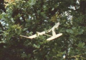 Eichwald_1987
